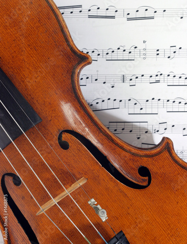 antique italian violin