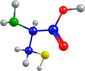 the 3d-rendered colorified molecule of cysteine