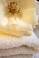 flor sobre toalla
