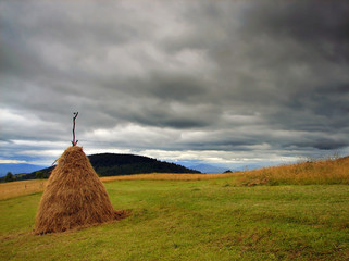 hay before rain