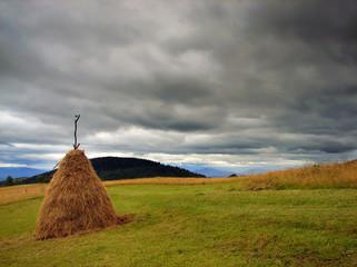 hay before rain