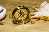 old style gold compass on papyrus background poster