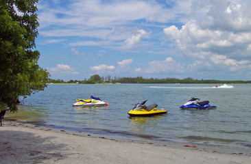 southwest florida 16