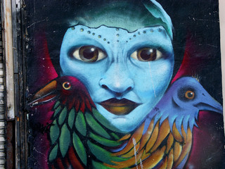 blue face and two birds