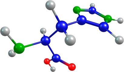 the 3d-rendered colorified molecule of histidine