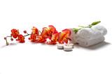 Orchidee, świece i ręczniki SPA - 1489230