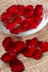 rose petals in a bowl