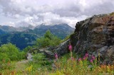 swiss alpine landscape