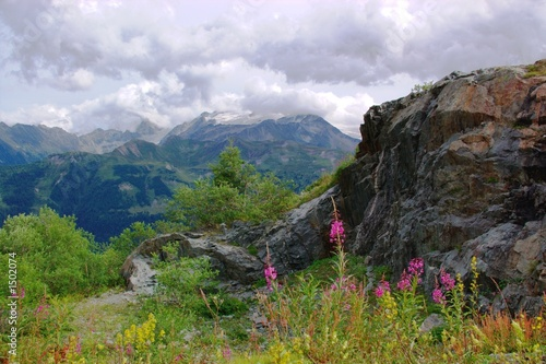 swiss alpine landscape - 1502074