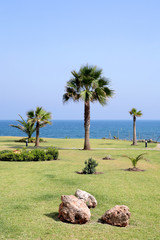 view to sunny lawn, garden and sea