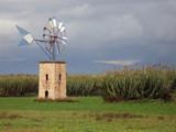 windmill in majorca poster