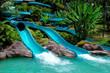 water slide - 1516444