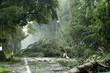 Leinwandbild Motiv storm damage