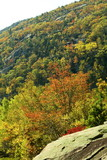 colorful fall trees and granite hillside poster