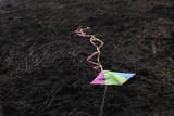 laying kite poster