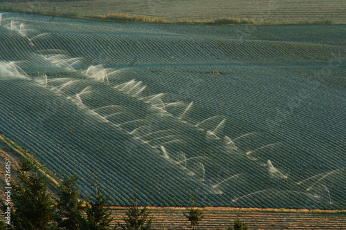 oregon irrigation
