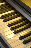 musical instruments: piano