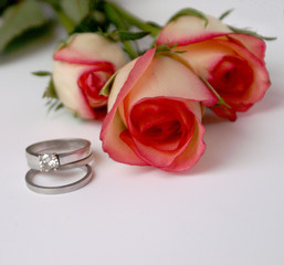 cream and pink roses and wedding rings