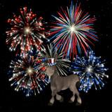political doneky - fireworks poster
