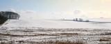 winter panorama poster