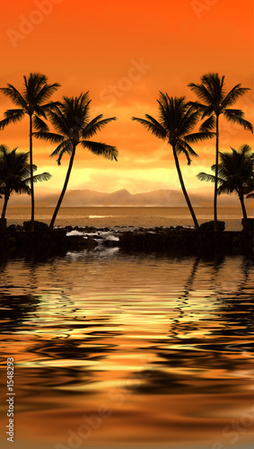 canvas print picture tropical dream