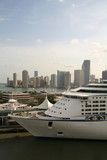docked cruise line with miami skyline poster