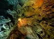 Quadro caves