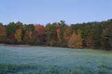 morning frost and fall colored trees in maine poster