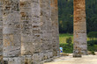 segesta greek temple 6