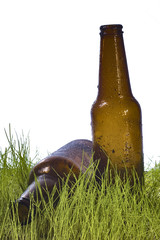 bottle in grass