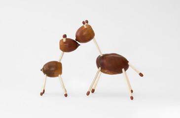 chestnut familly 2