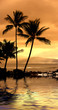 canvas print picture icon tropical sunset