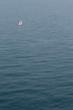 bateau perdu