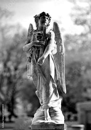 cemetery angel - 1580851