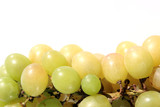brush and sheet of a grapes on a light background poster