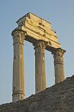 roman columns poster