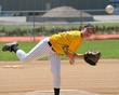 baseball boy pitching