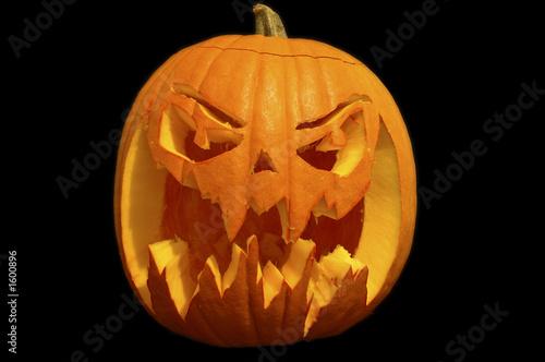 citrouille halloween 8