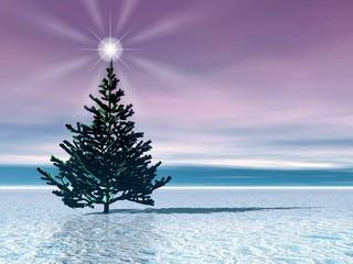 christmas tree. star