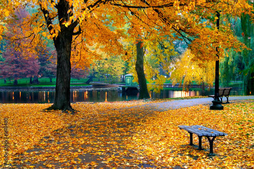 Papiers peints Jardin autumn in boston public garden