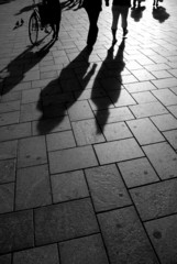 shadows on the pavement 3