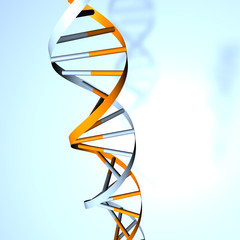 dna doppel helix