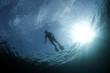 roleta: diver 1