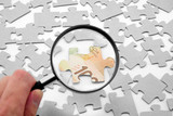 canadian dollar puzzle and magnifier poster
