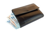 wallet with european money poster