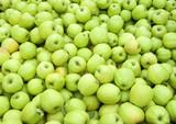 green apples in bin poster