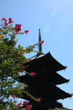 pagoda. kyoto. japan poster