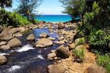 river leading to ocean in kauai poster