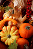 thanksgiving fall harvest poster