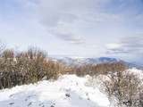 quiet morning winter mountain landscape poster